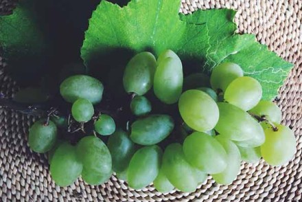 Uva Thumb | Corsi di Cucina a Milano